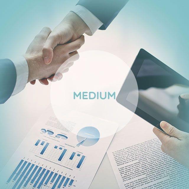 Presupuesto medium